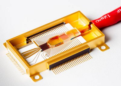 goldbox photonic package with RF connections and fiber array
